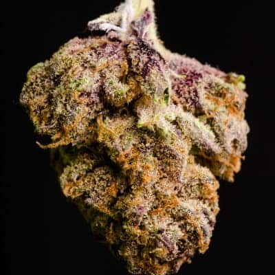 Purple Kush Review 2