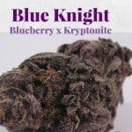 Blue Knight Marijuana Strain Review