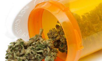 Marijuana and Epilepsy – Treatment With Results.