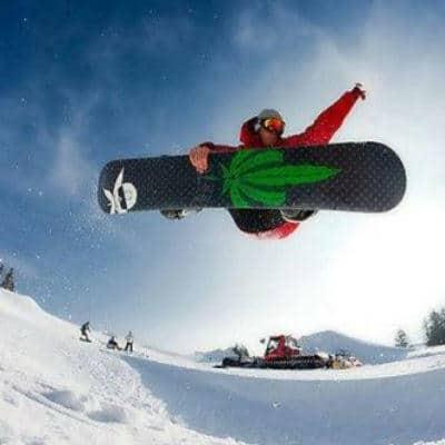 Snowcap Marijuana Strain Review