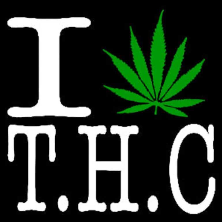 large_THC-Hoodie-Logo