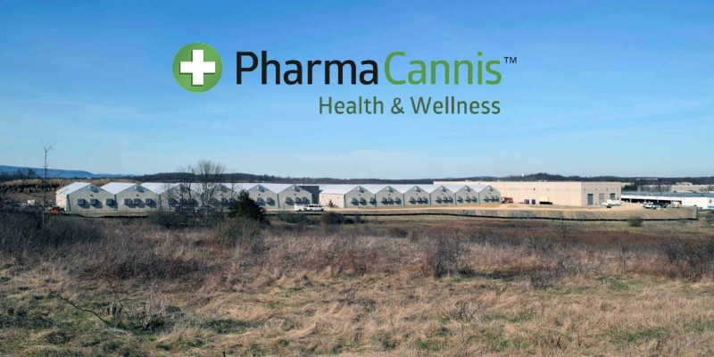 PharmaCannis-Albany-cannabis-1