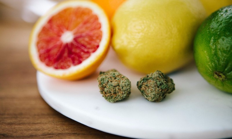 what-is-limonene-and-what-are-the-benefits-of-this-cannabis-terpe