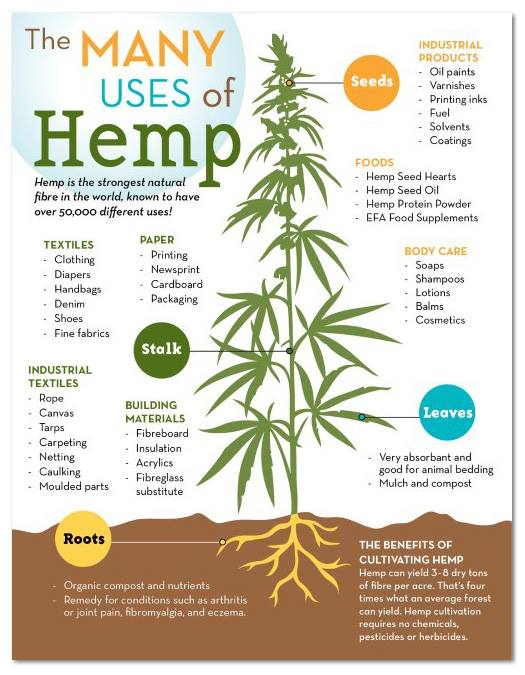 the uses and benefits of industrial hemp Environmental and economic benefits of hemp hemp is the same plant as marijuana, its scientific marijuana has dozens of proven medicinal uses.