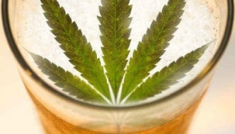 Haze Beer Marijuana Edibles Review