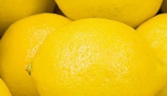 Golden Lemons Review – Golden Greatness
